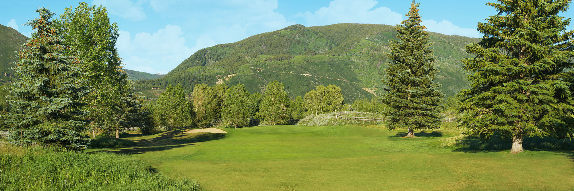 Golf Course Image - Aspen Golf Course No. 8