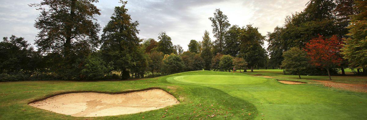 Badgemore Park Golf Club No. 15