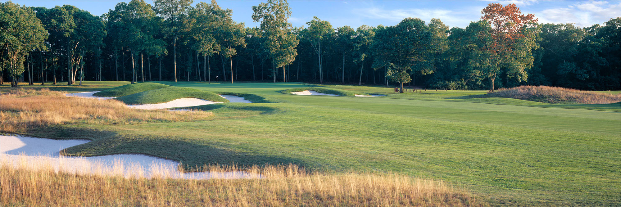 Golf Course Image - Bethpage No. 11