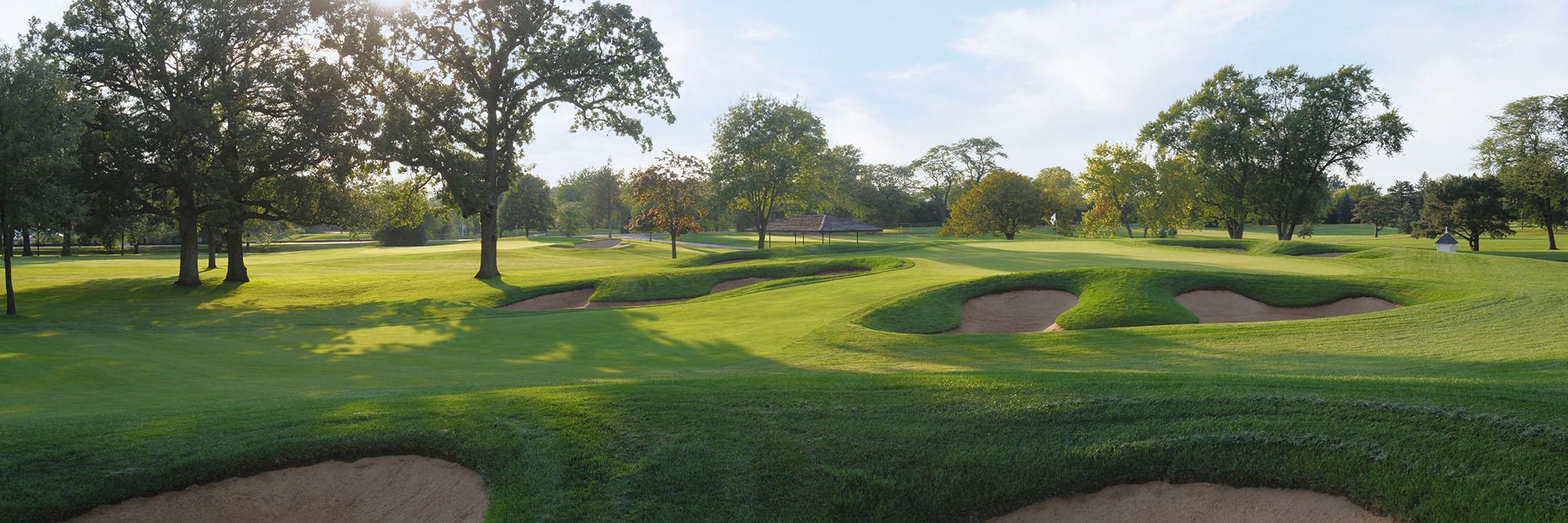 Golf Course Image - Cog Hill 4 No. 10