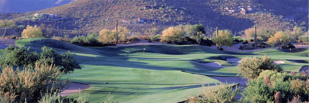 Desert Mountain Renegade No. 14