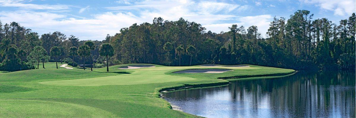 Disney's Palm Course No. 3