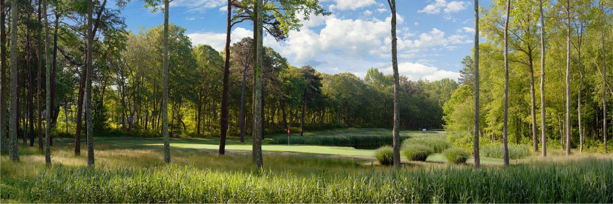 Eagle Oaks Golf & Country Club No. 8
