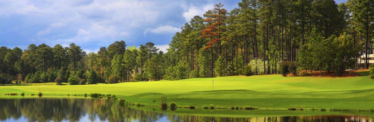 Forest Creek Golf Club North No. 15