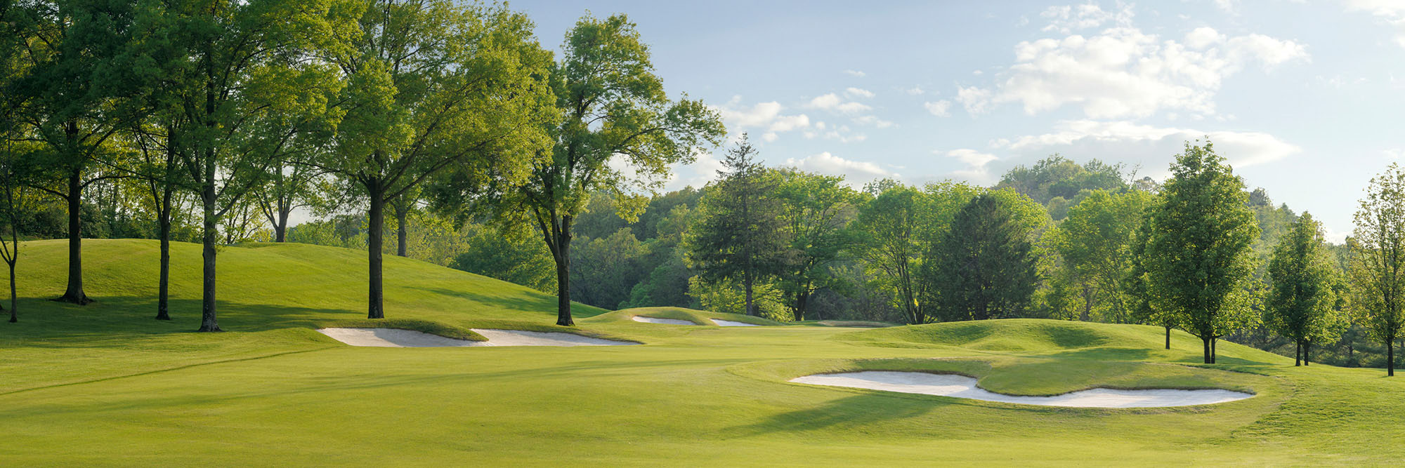 Golf Course Image - Forest Hills Country Club No. 14
