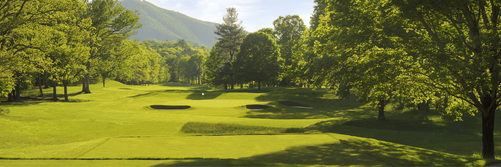 Golf Course Image - The Greenbrier Meadows Course No. 10