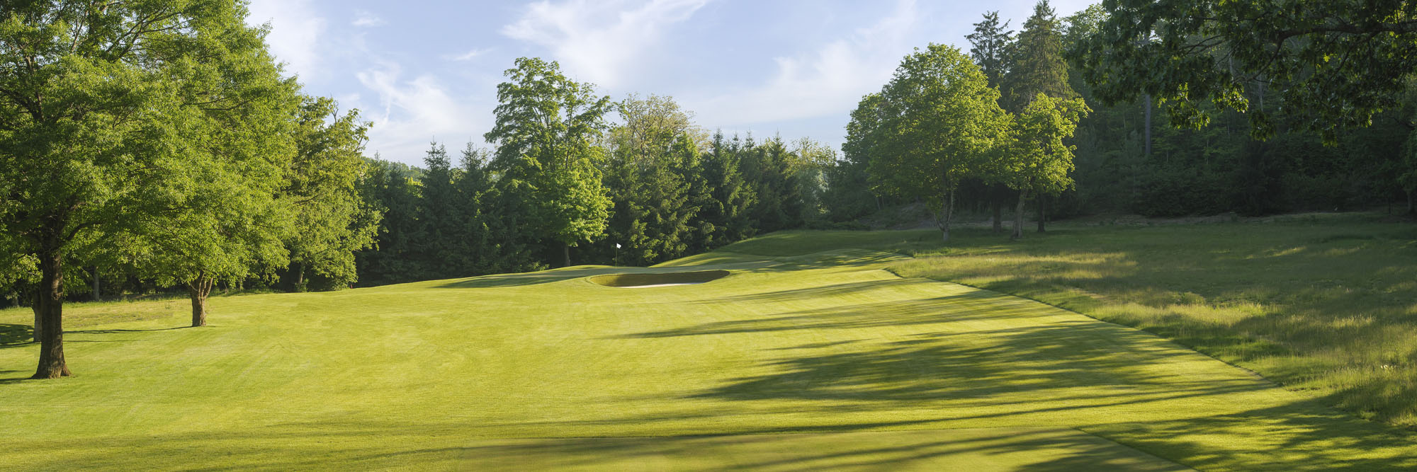 Golf Course Image - The Greenbrier Meadows Course No. 3