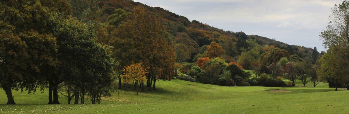 Holywood Golf Club No. 1