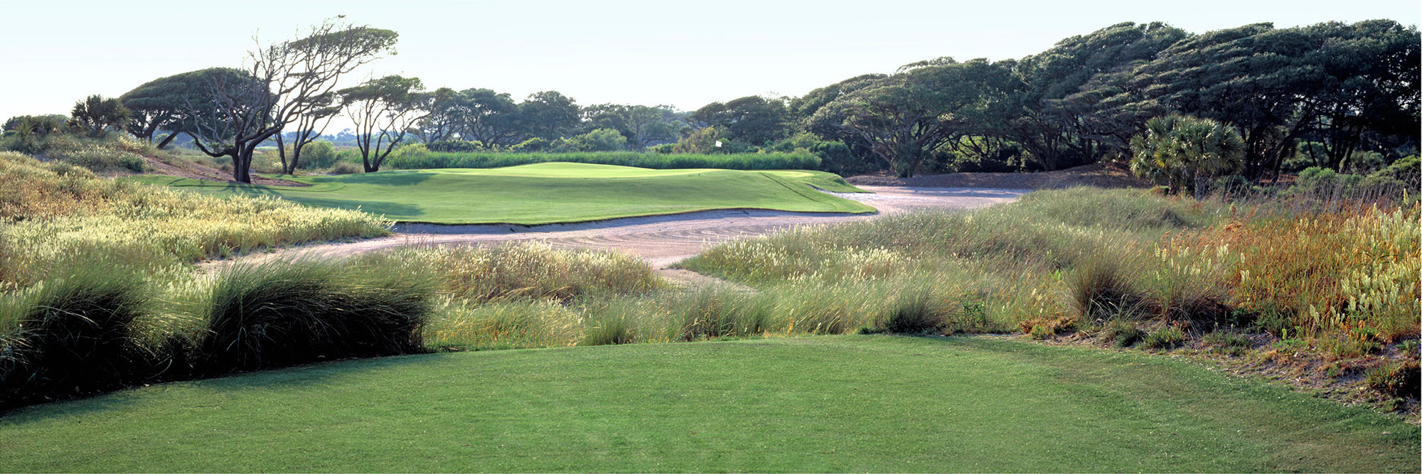 Golf Course Image - Kiawah Ocean Course No. 8
