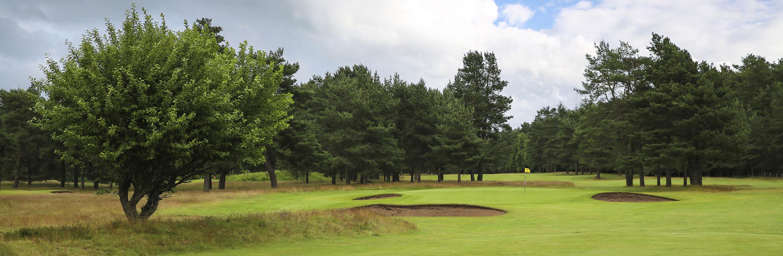 Golf Course Image - Ladybank Golf Club No. 1