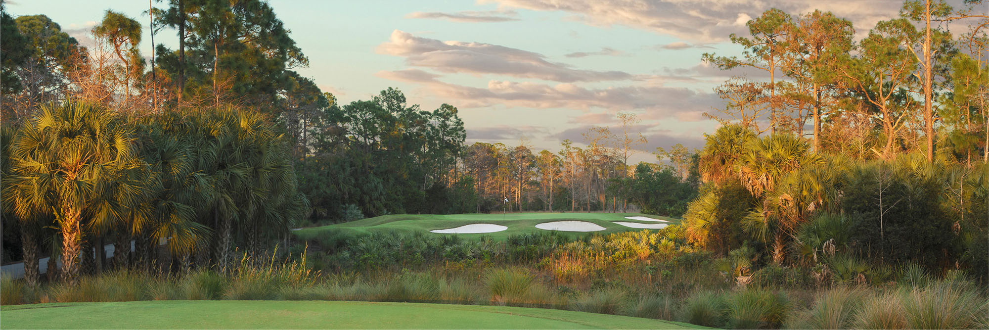 Golf Course Image - Mirasol Sunset No. 16