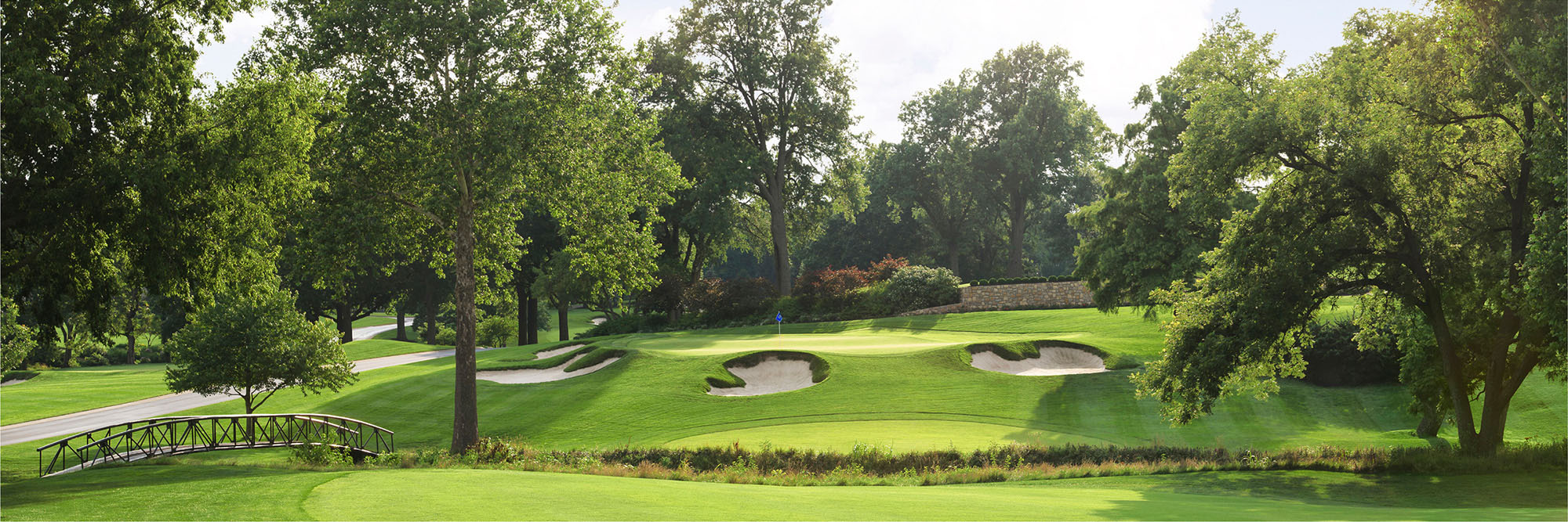 Golf Course Image - Mission Hills No. 15