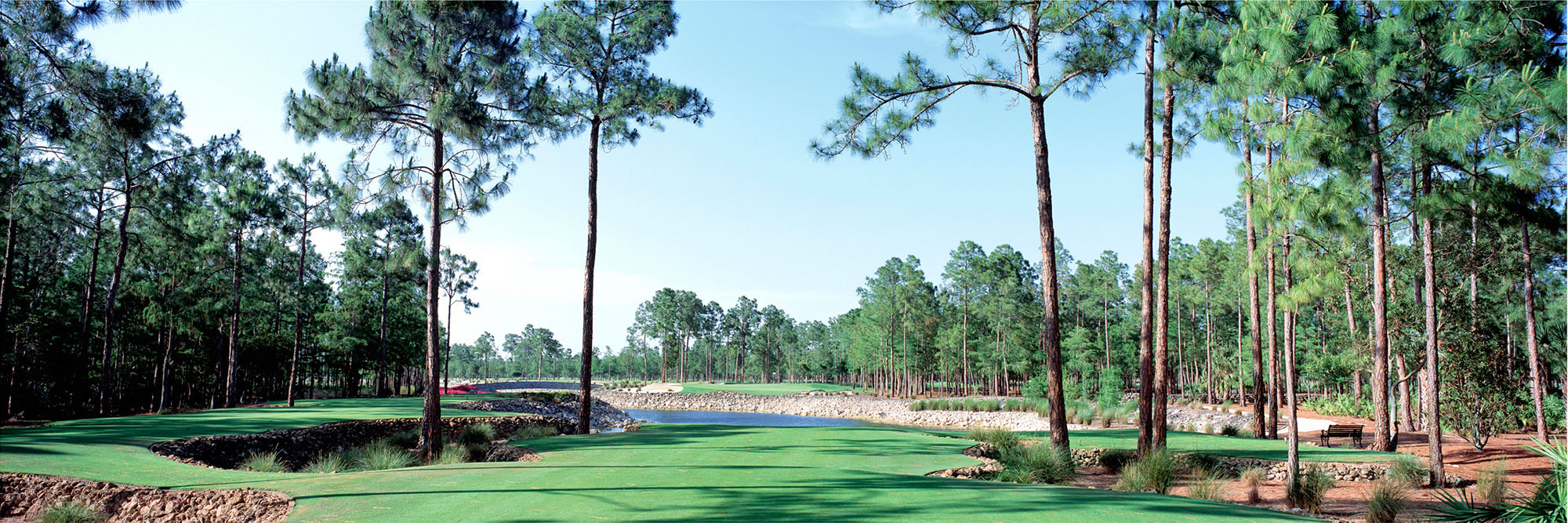 Golf Course Image - Naples National No. 3
