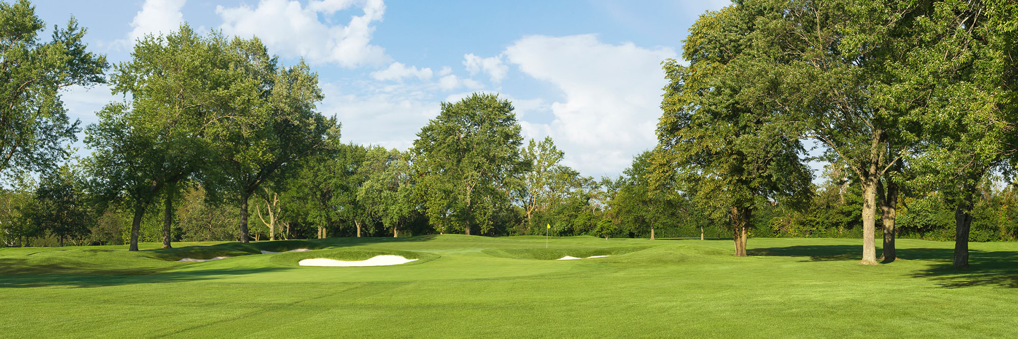 Golf Course Image - Olympia Fields North No. 8
