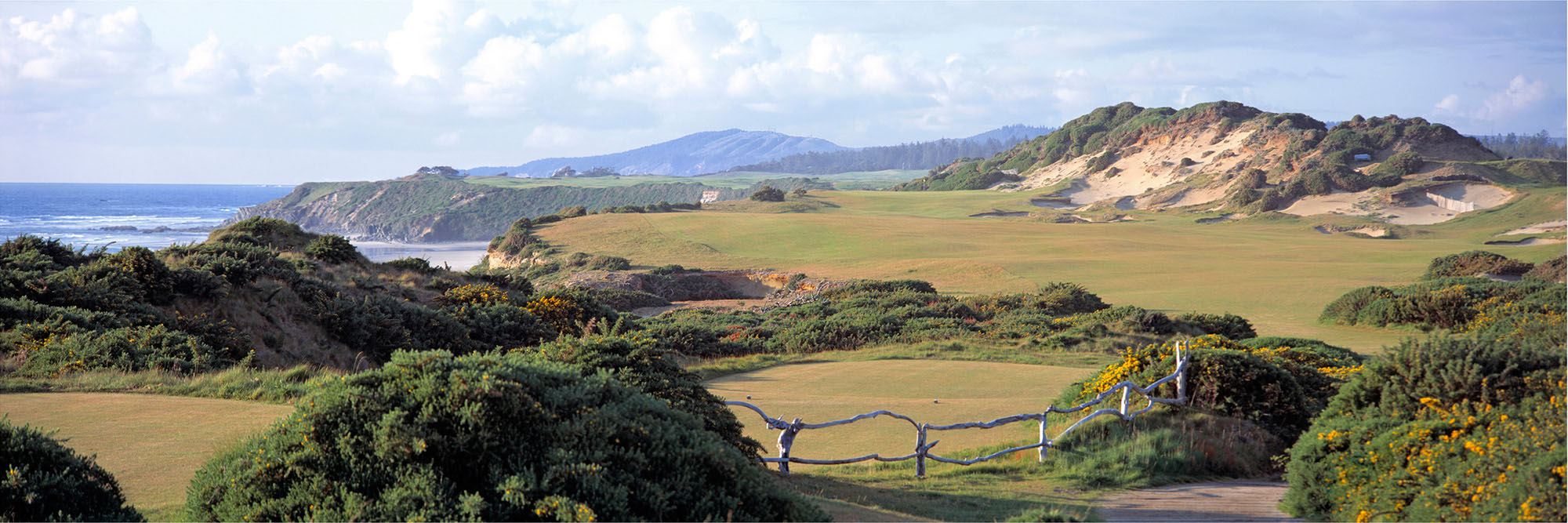 Golf Course Image - Pacific Dunes No. 13