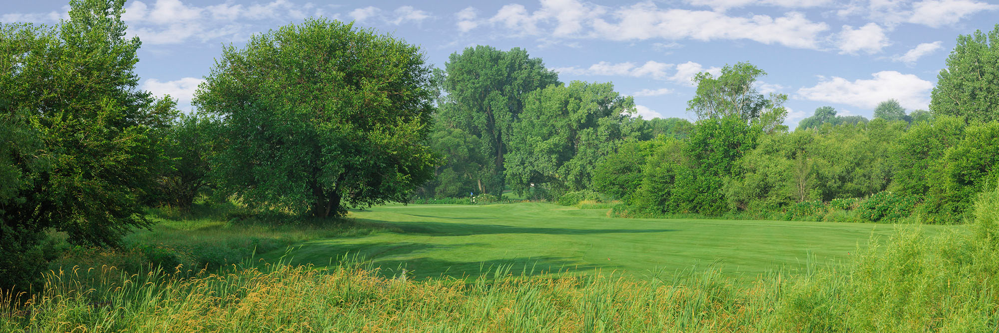 Golf Course Image - Pacific Springs No. 4