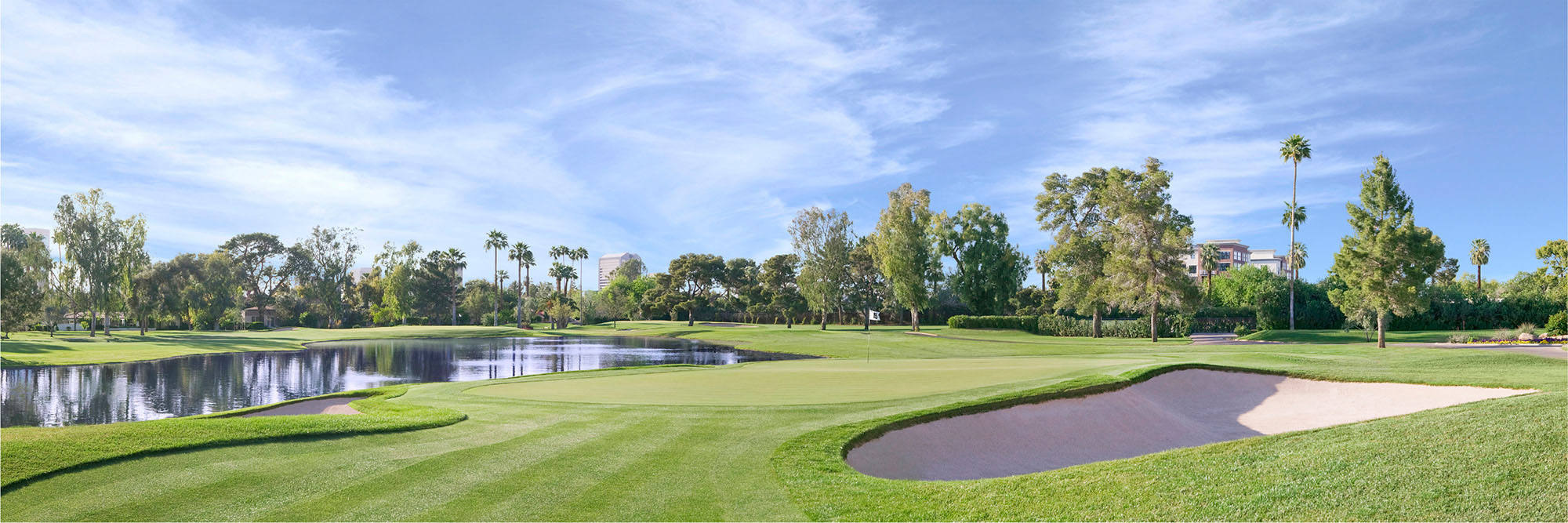 Golf Course Image - Phoenix Country Club No. 15