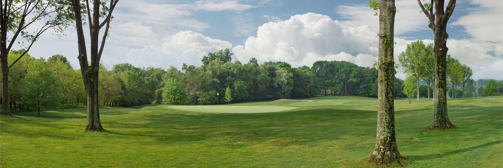 Golf Course Image - Pittsburgh Field Club No. 11