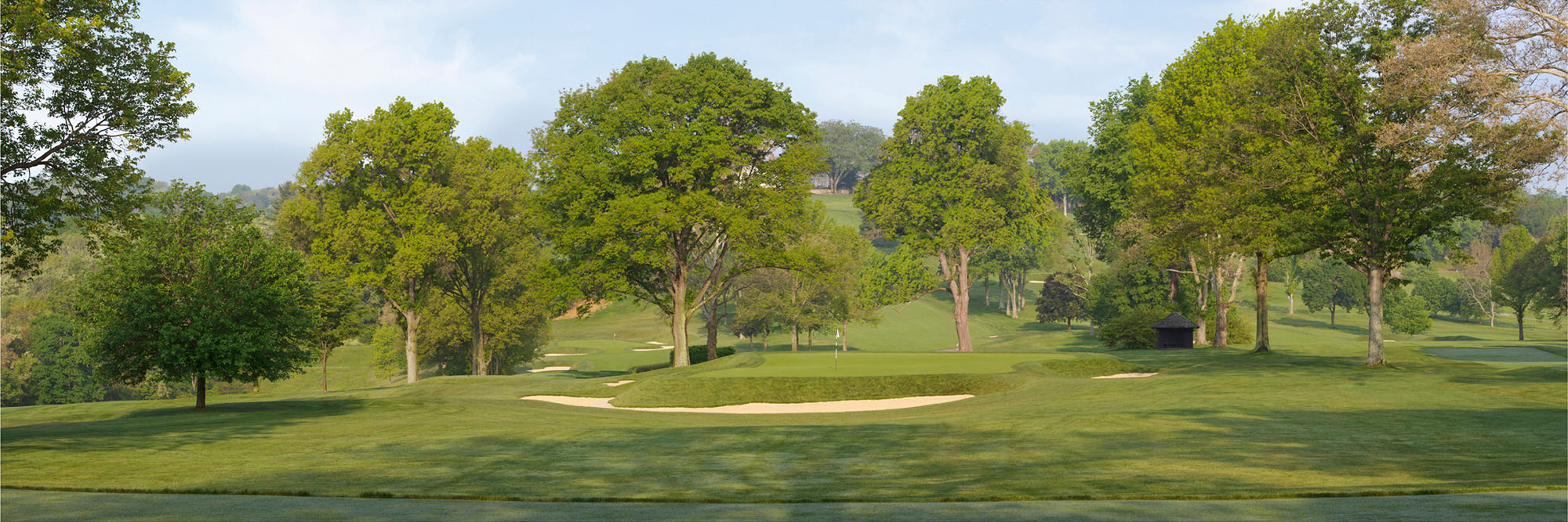 Golf Course Image - Pittsburgh Field Club No. 4
