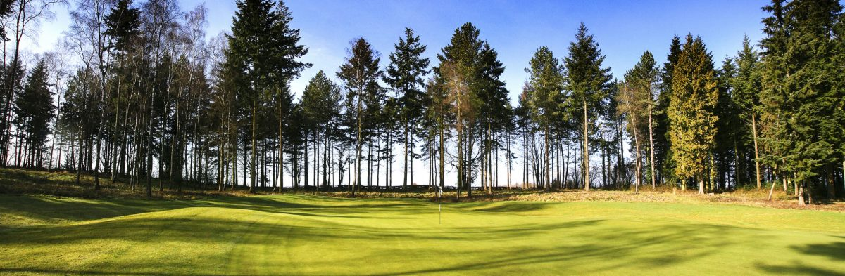 Remedy Oak Golf Club No. 1