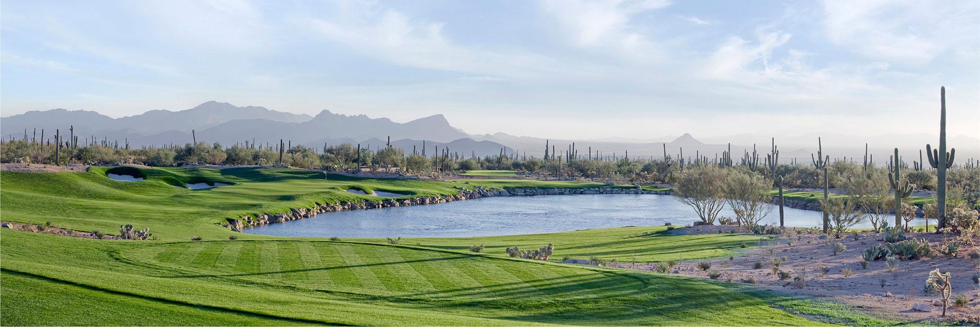 Golf Course Image - Ritz Carlton Dove Mountain No. 3