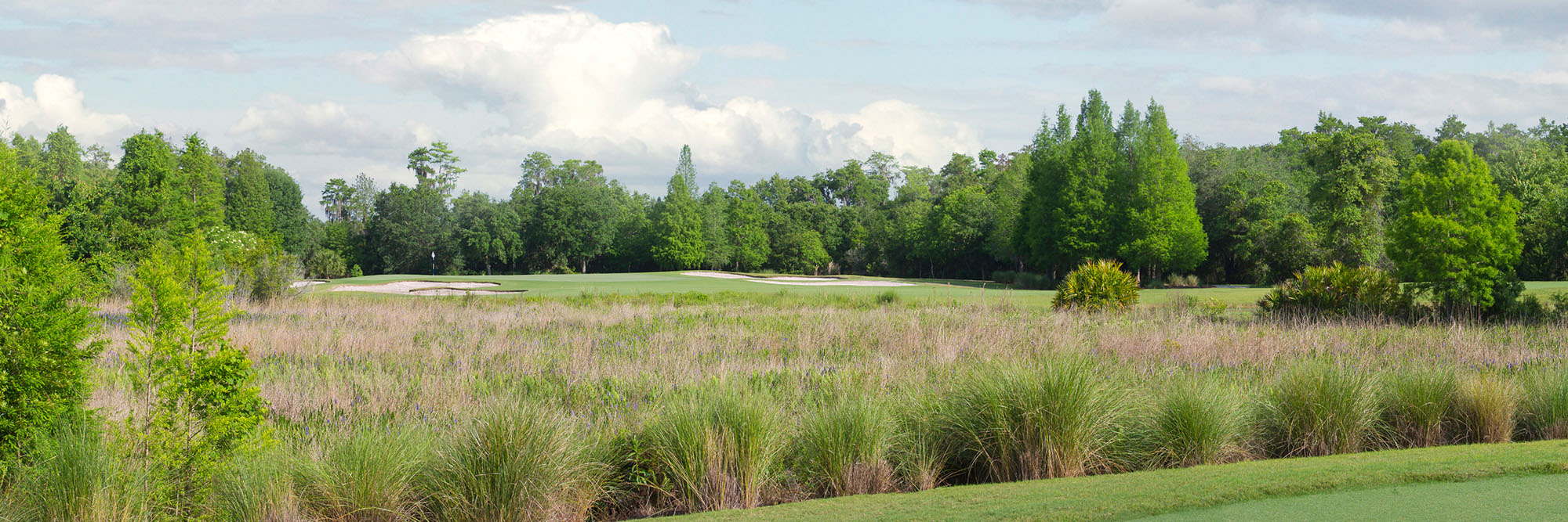 Golf Course Image - Ritz-Carlton Orlando No. 8