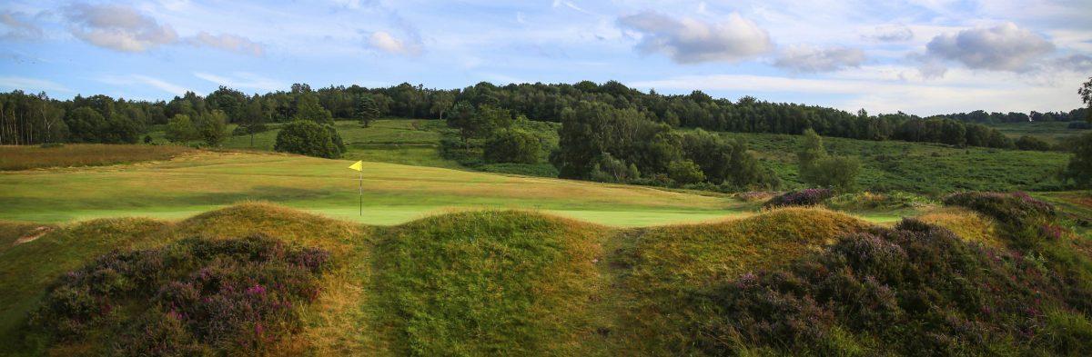 Royal Ashdown Forets Golf Club No. 11