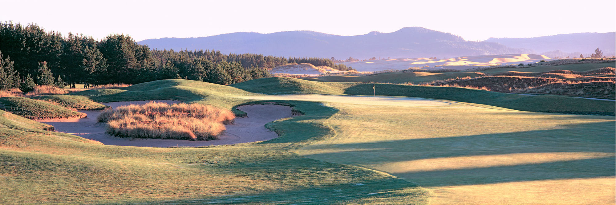Golf Course Image - Sandpines No. 14