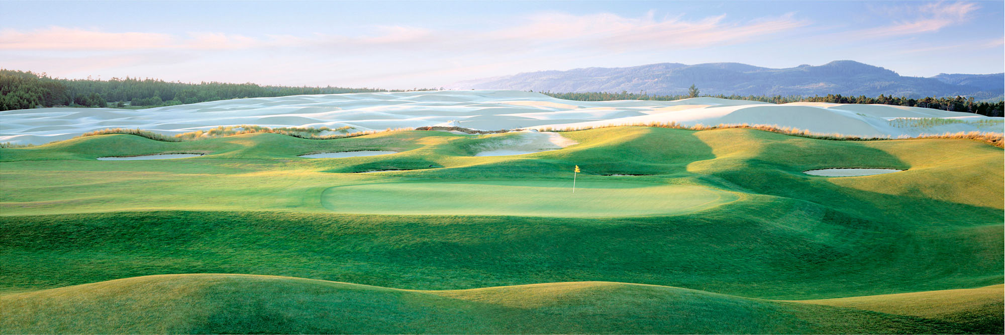 Golf Course Image - Sandpines No. 7