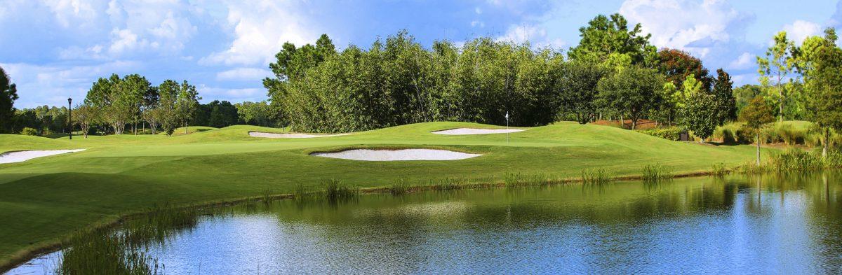 Shingle Creek Golf Club No. 8