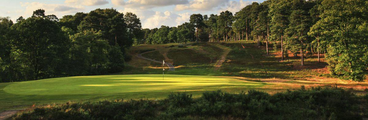 St Georges Hill Golf Club No. 8