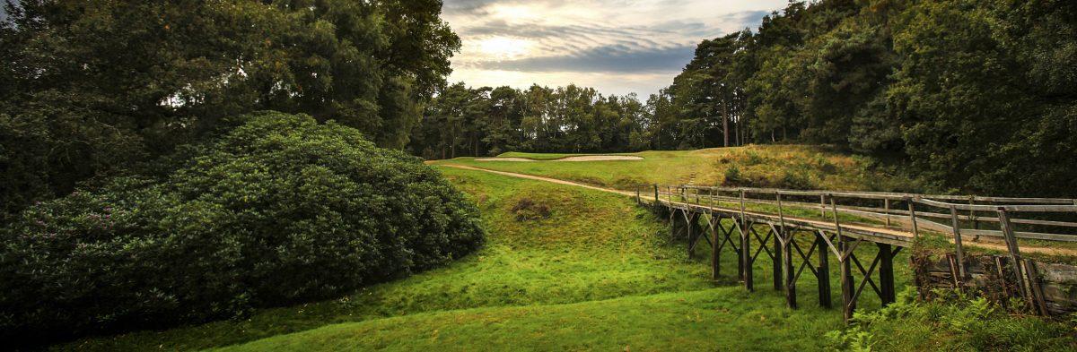 Stomeham Golf Club No. 8