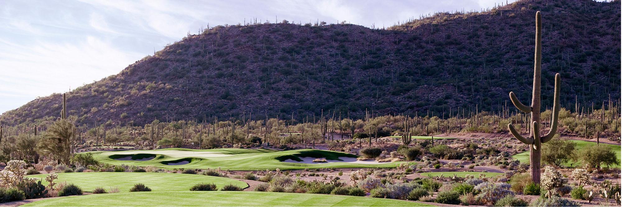 Golf Course Image - Ritz Carlton Dove Mountain No. 7