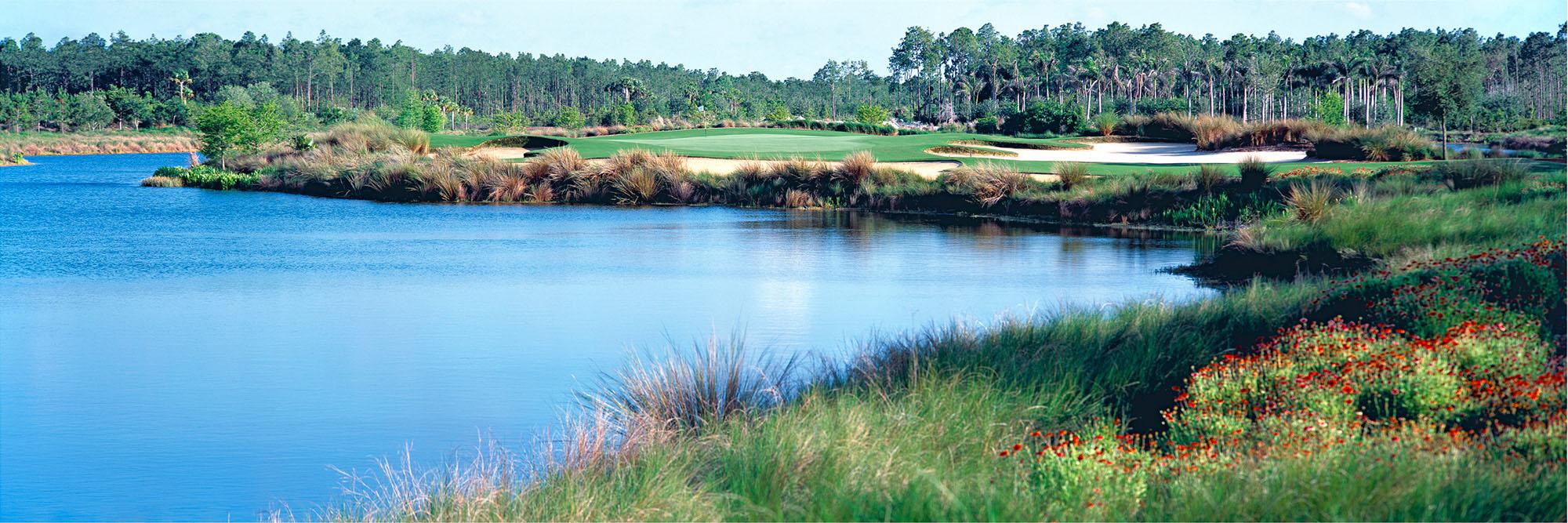 Golf Course Image - Tiburon Gold Course No. 5