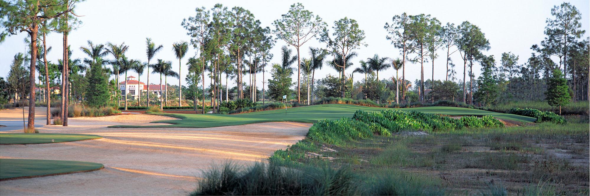 Golf Course Image - Tiburon Gold Course No. 8