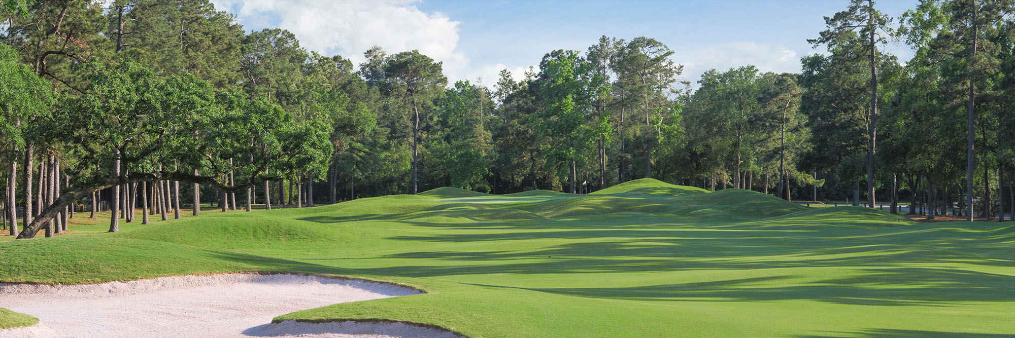 Golf Course Image - Woodlands-Palmer King Course No. 5