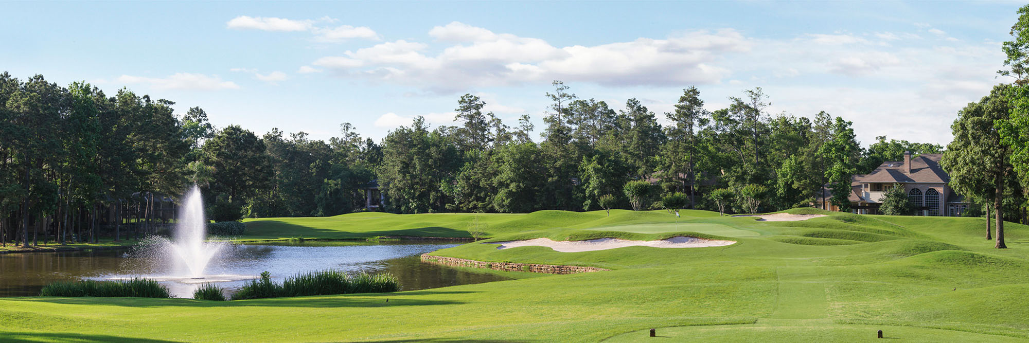 Golf Course Image - Woodlands-Palmer King Course No. 6