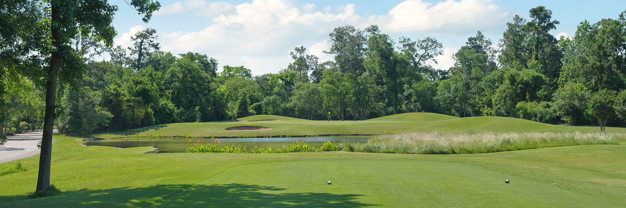 Golf Course Image - Woodlands-Panther Trail Course No.17