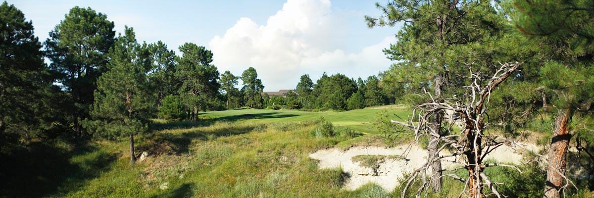 Golf Course Image - The Prairie Club Pines No. 17